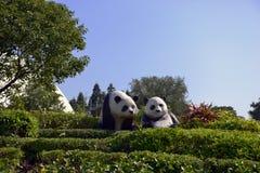 Panda, ocean Parkowy Hong Kong Fotografia Royalty Free