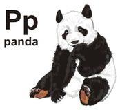 Panda och abc Arkivbilder