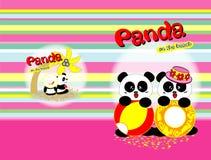 Panda op het strand Stock Fotografie