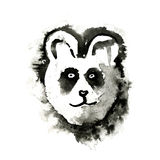 Panda, painted ink illustration, isolated on white Stock Photos