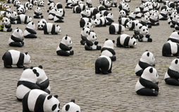 Panda Pattern. The party of WWF Open day in Rome. Each Pet panda is a real panda saved by WWF Stock Images