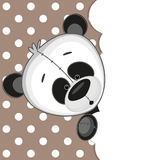 Panda peeking out Royalty Free Stock Image