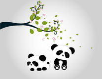 Panda playing under tree branches Royalty Free Stock Photo