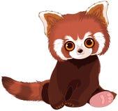 Panda Portrait rosso Immagine Stock