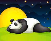 Panda resting in night Royalty Free Stock Images