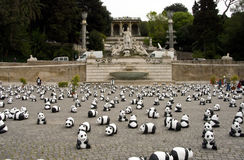 Panda in Rome royalty free stock photos