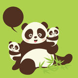 Panda's Royalty-vrije Stock Afbeeldingen