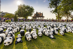 1600 panda's Royalty-vrije Stock Foto
