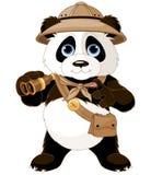 Panda Safari Explorer. Panda  safari explorer with binoculars Royalty Free Stock Images