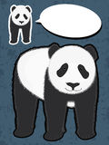 Panda Say Something Stock Image
