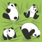 PANDA SEAMLESS 1. Vector pattern with funny pandas Stock Image