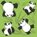 PANDA SEAMLESS 2. Vector pattern with funny pandas Stock Images