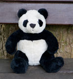 Panda on a seat Royalty Free Stock Images