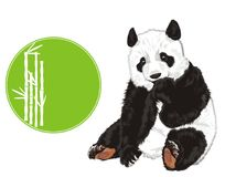 Bear and banner with bamboo. Panda sit with green round icon with white bamboo Stock Image
