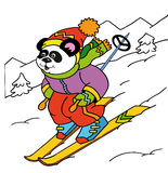 Panda skier. Down the slope Royalty Free Stock Images