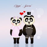 Panda spouses Stock Images