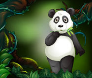Panda standing in deep forest stock illustration