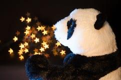 Panda and stars. Panda and light stars stock photos