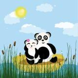 Panda sul lago illustrazione di stock