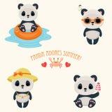Panda during summer time Royalty Free Stock Image
