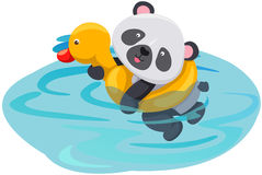 Free Panda Swimming With Duck Tube Royalty Free Stock Image - 26155996