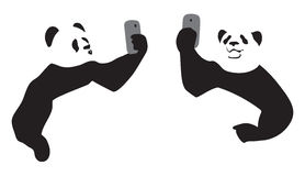 Panda taking a selfie. With a phone Stock Photos