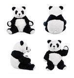 Panda teddy bear positions. Panda Teddybear showing different set of positions royalty free stock images