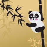 Panda und Bambus Stockfotografie