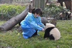 Panda und junges Mädchen in China Lizenzfreie Stockbilder