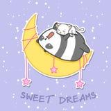 Panda und Katze schlafen auf dem Mond lizenzfreie abbildung
