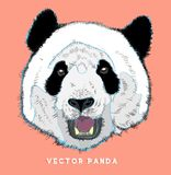 Panda vector– stock illustration – stock illustration file. Panda vector – stock illustration – stock illustration fileneditable file vector illustration
