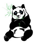 Panda vector Stock Image
