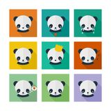 Panda vector icons set in flat design. Animal avatars with different emotions stock illustration