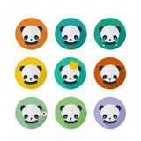 Panda vector icons set in flat design. Cute panda, animal avatars with different emotions Stock Photo