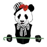 Panda w cyrku ilustracji