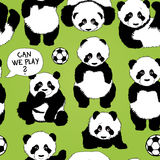 Panda wants to play footbal Stock Images