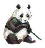 Panda, watercolor Royalty Free Stock Photos