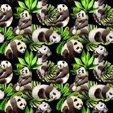 Panda wild animal pattern in a watercolor style. Royalty Free Stock Image