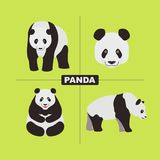 Panda Wildlife Chinese Animal. Vector Royalty Free Stock Photos