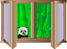 Panda at the window Royalty Free Stock Photography