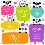 Panda y gatitos Imagen de archivo libre de regalías