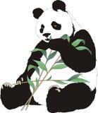 Panda2 Royalty Free Stock Photo