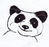 Pandabjörnen skissar Fotografering för Bildbyråer