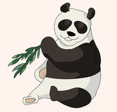 Pandabjörn som äter en bambu Royaltyfri Bild