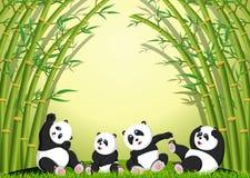 Pandahandlingen som tillsammans spelar under bambu vektor illustrationer