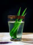 Pandan juice. With pandan leaf Stock Image