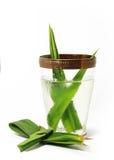 Pandan juice. With pandan leaf Royalty Free Stock Images