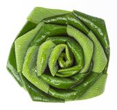 Pandan leaf flower Royalty Free Stock Photo