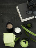 Pandanus que diseña la comida Imagen de archivo libre de regalías