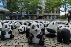 Pandas à Kiel Image libre de droits